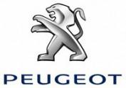 Peugeot Remblokken PFC